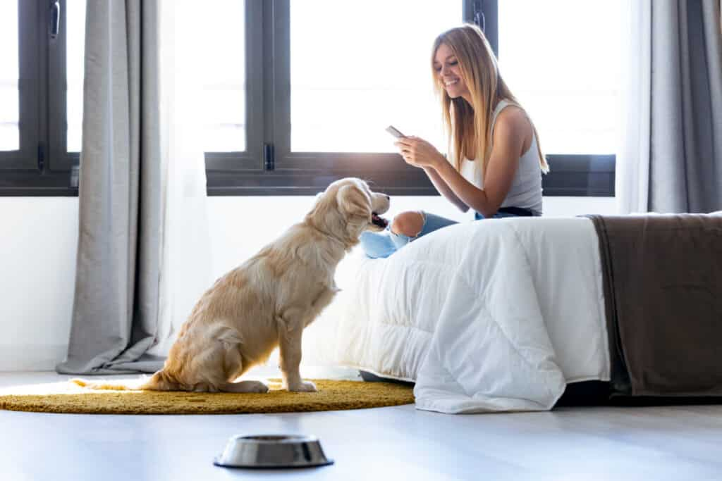 Use your smartphone to setup an account to have a dog stay at your home for a night or two. It's an easy way to earn a side income for very little effort.
